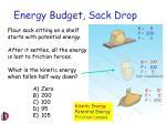 energy budget sack drop