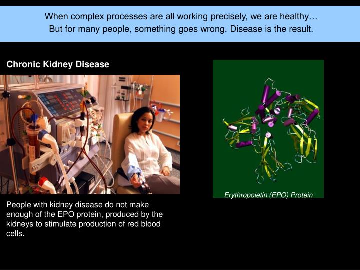 When complex processes are all working precisely, we are healthy…