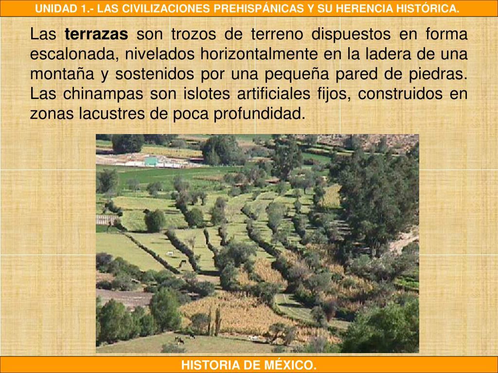 Ppt 1 2 Agricultura Y Alimentación Powerpoint