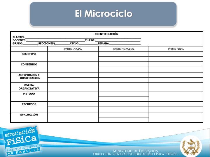 El Microciclo