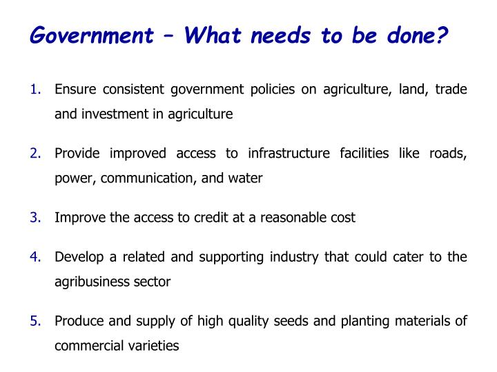 Government – What needs to be done?