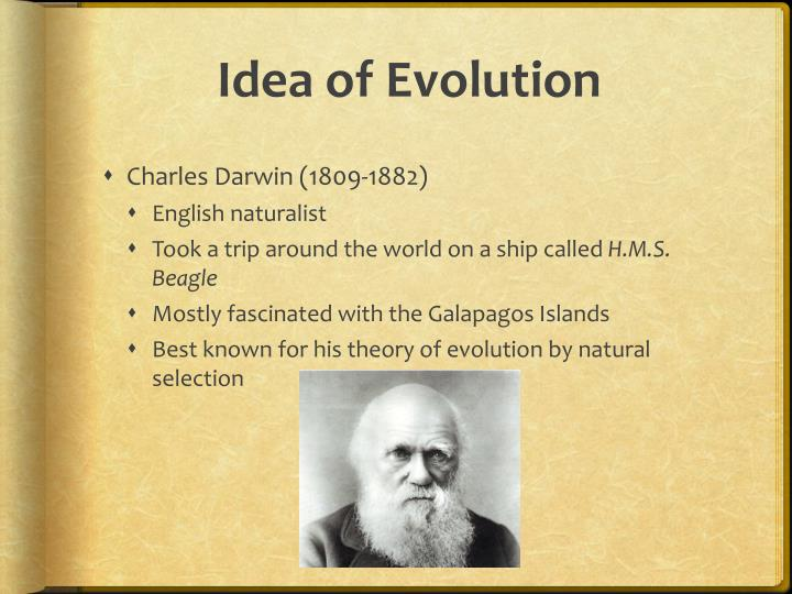 the impact of charles darwins theory of evolution Impact of darwin on the development of geographical concepts: charles darwin propounded the theory of he developed on the darwin's theory of evolution of.