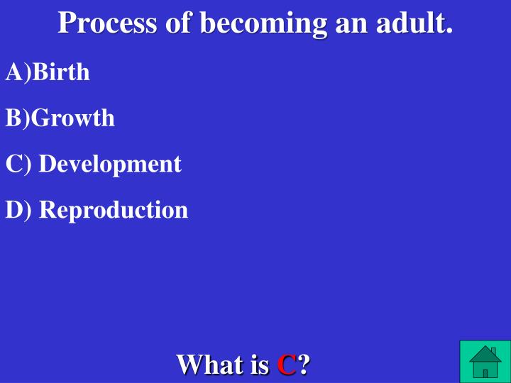 Process of becoming an adult