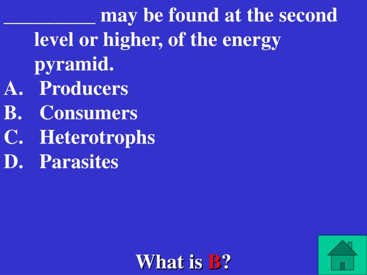_________ may be found at the second level or higher, of the energy pyramid.