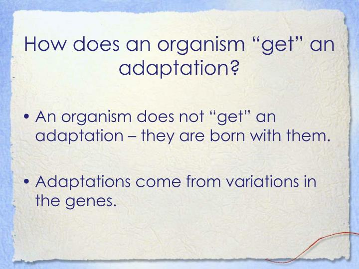 "How does an organism ""get"" an adaptation?"