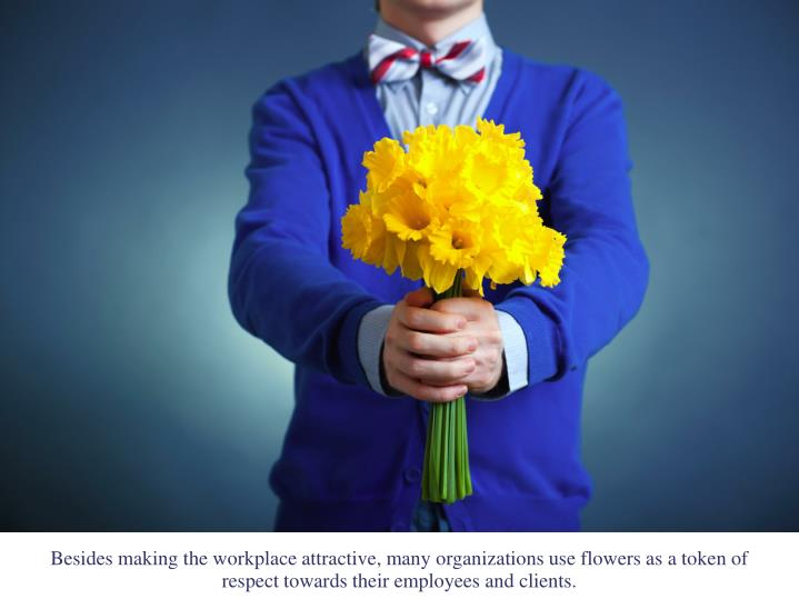 Besides making the workplace attractive, many organizations use flowers as a token of respect towards their employees and clients.