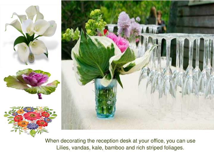 When decorating the reception desk at your office, you can use Lilies, vandas, kale, bamboo and rich striped foliages.