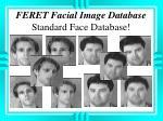 feret facial image database standard face database