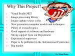 why this project