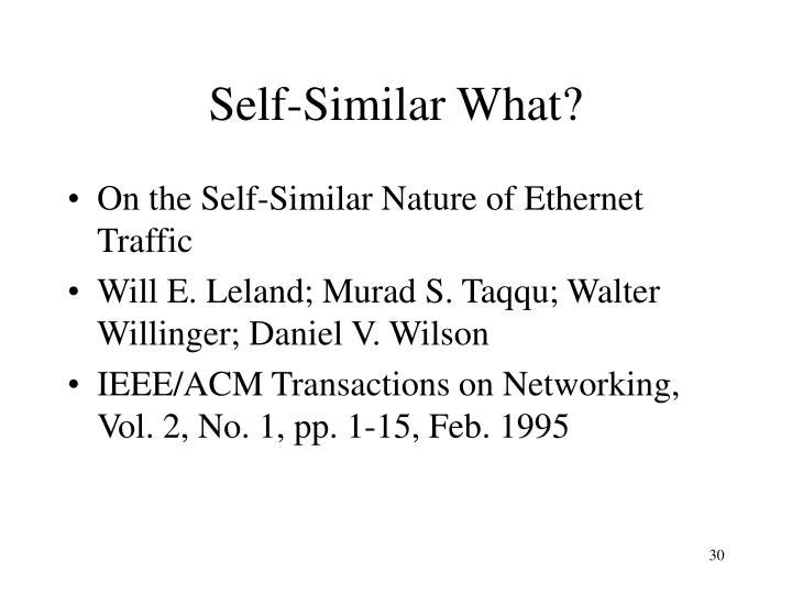 Self-Similar What?