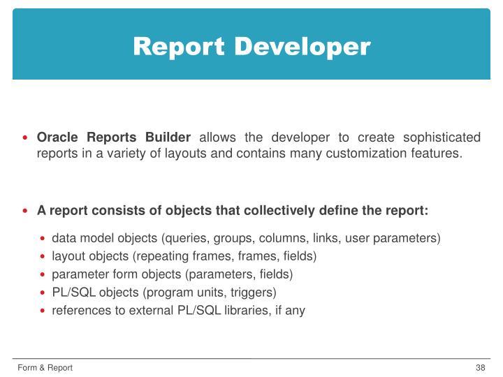 Report Developer