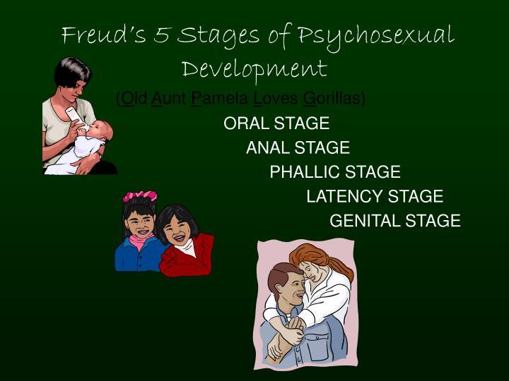 genital stage of development