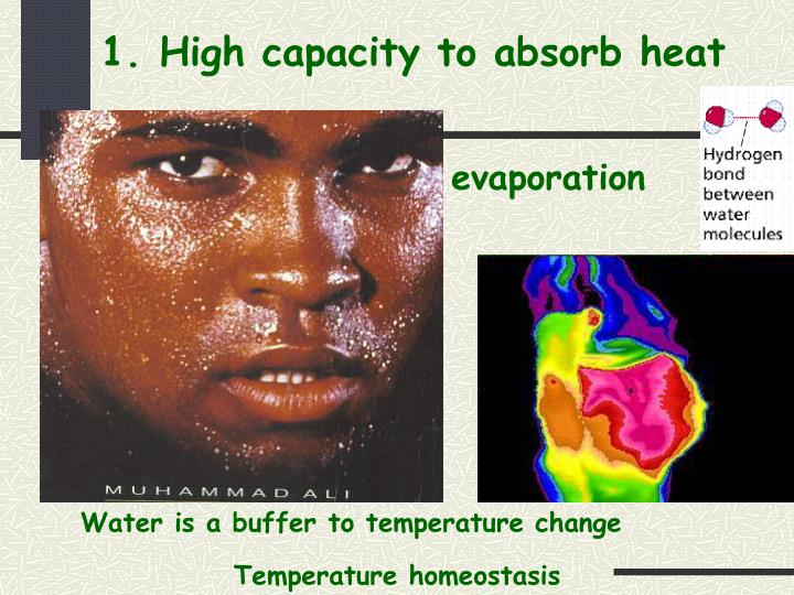 1. High capacity to absorb heat