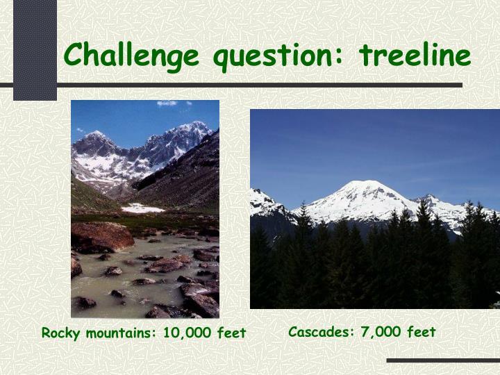 Challenge question: treeline