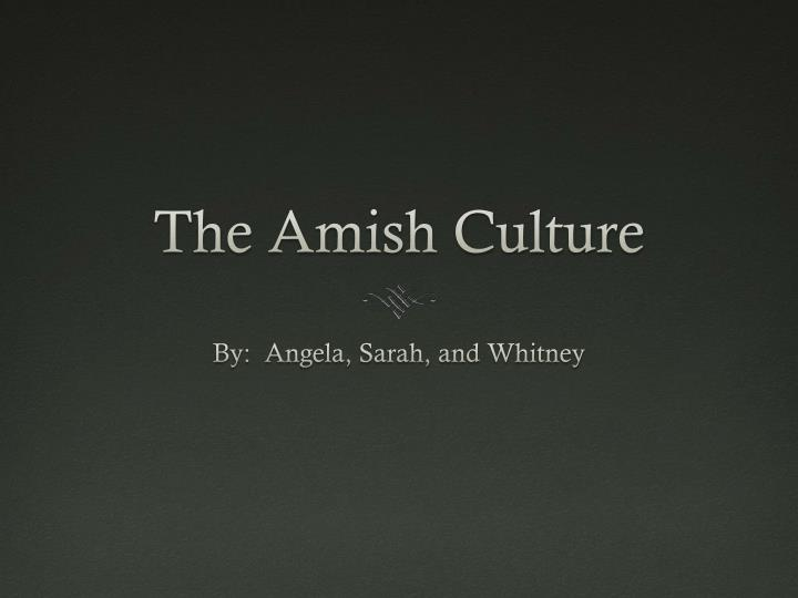 the amish culture n.
