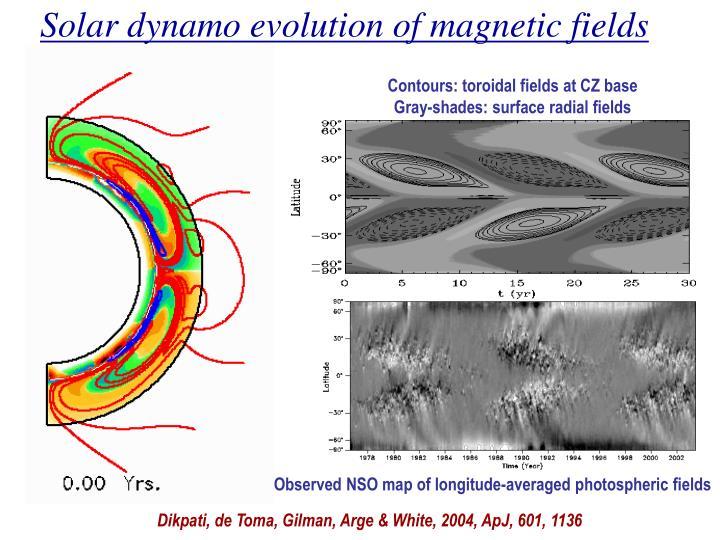 Solar dynamo evolution of magnetic fields