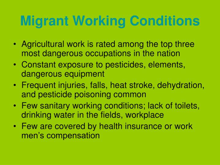 Migrant Working Conditions