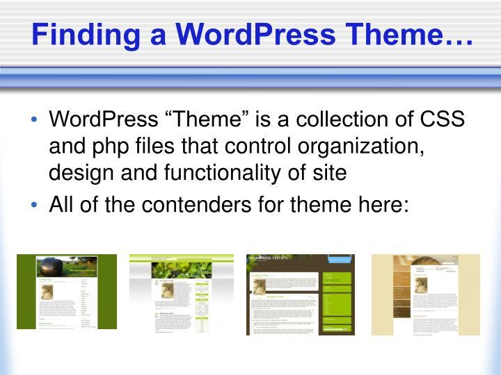 Finding a WordPress Theme…
