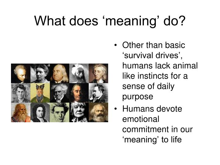 What does 'meaning' do?