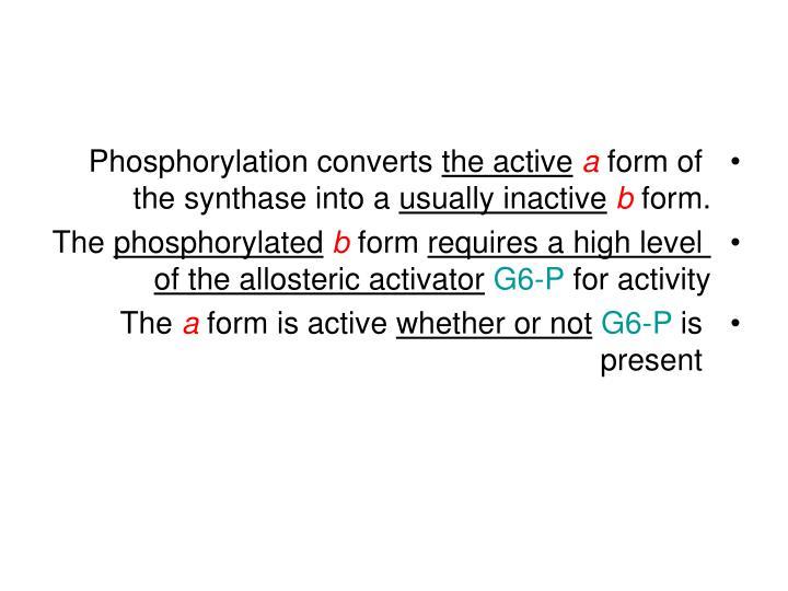 Phosphorylation converts