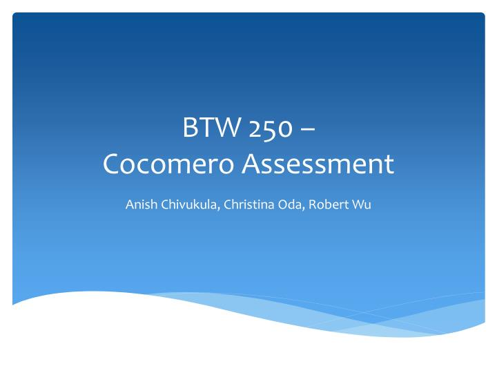 btw 250 cocomero assessment n.