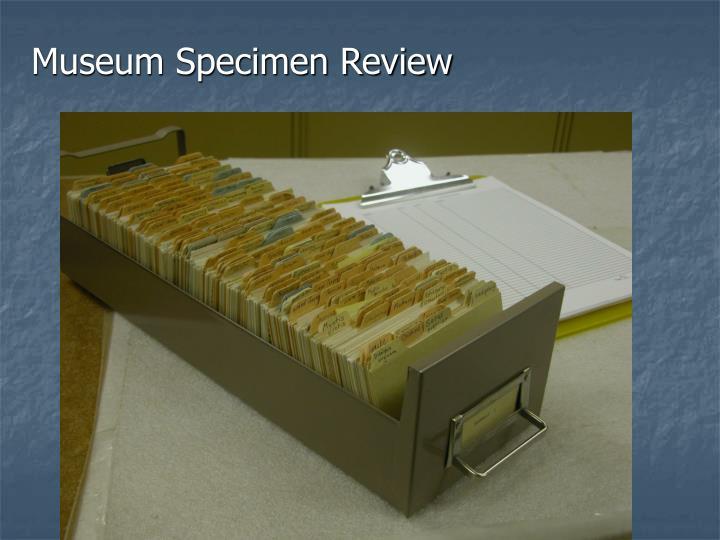 Museum Specimen Review