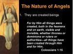 the nature of angels1