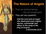 the nature of angels10