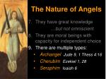 the nature of angels14