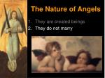 the nature of angels4
