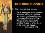 the nature of angels8