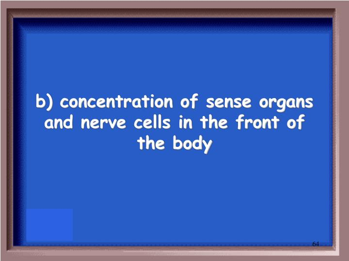 b) concentration of sense organs and nerve cells in the front of the body