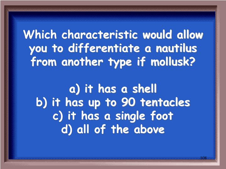 Which characteristic would allow you to differentiate a nautilus from another type if mollusk?