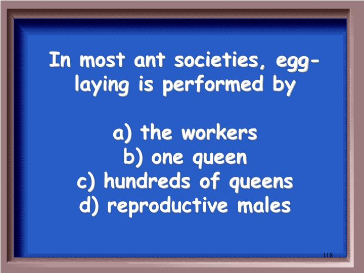 In most ant societies, egg-laying is performed by