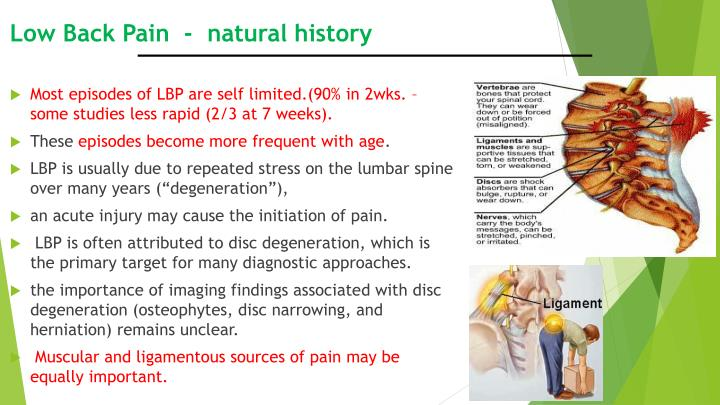 Low Back Pain  -  natural history