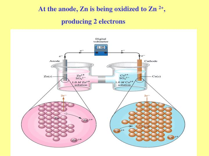 At the anode, Zn is being oxidized to Zn