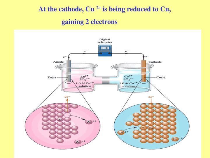 At the cathode, Cu