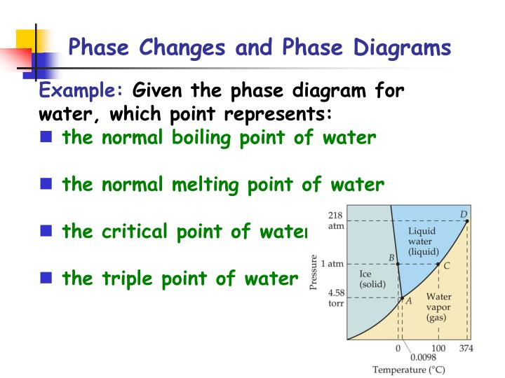 Ppt Phase Changes Amp Phase Diagrams Powerpoint Presentation