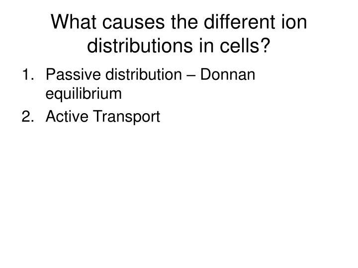 donnan equilibrium example