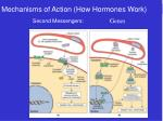mechanisms of action how hormones work