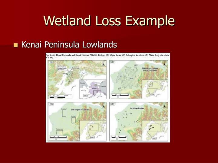 Wetland Loss Example