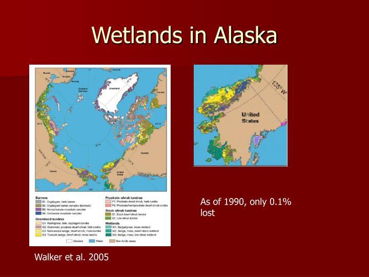 Wetlands in alaska