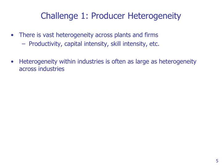 Challenge 1: Producer Heterogeneity