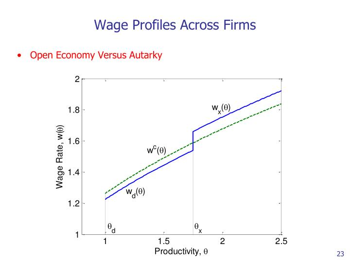 Wage Profiles Across Firms