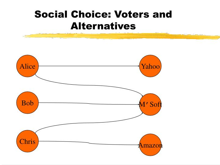 Social choice voters and alternatives