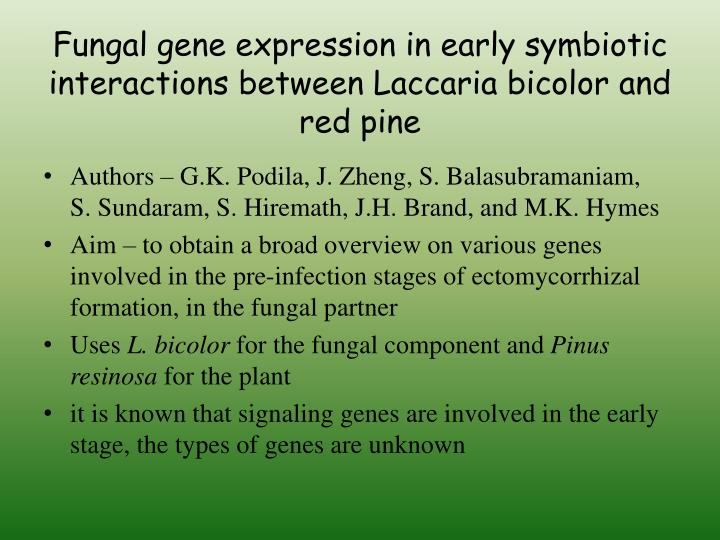 Fungal gene expression in early symbiotic interactions between Laccaria bicolor and red pine