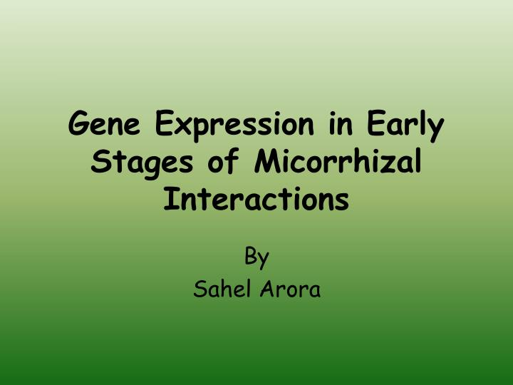 Gene Expression in Early Stages of Micorrhizal Interactions
