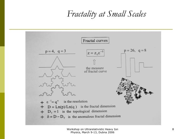 Fractality at Small Scales