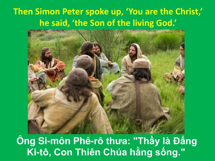 Then Simon Peter spoke up, 'You are the Christ,' he said, 'the Son of the living God.'