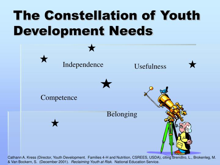 The Constellation of Youth Development Needs